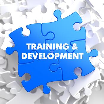 teacher-training-program-puzzle